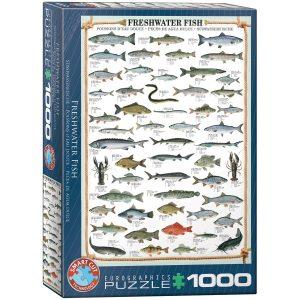 Puzzle Eurographics Peces de agua fría de 1000 piezas