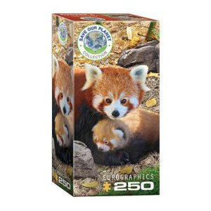 Puzzle niños Eurographics Panda rojo de 250 piezas